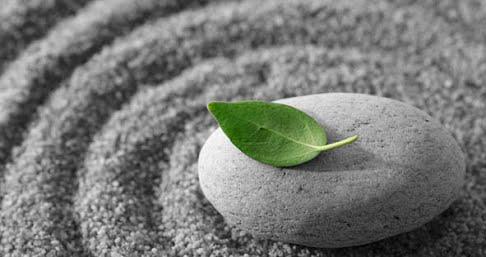 mindfulness-image