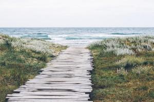 Camino hacia el mar